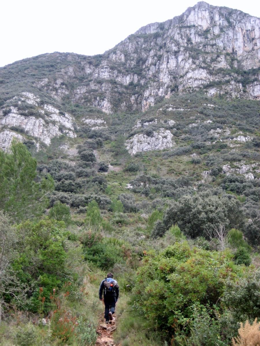 Barx - La Drova :Sierra del Buixcarró - El Aldaia y el Pla de les Simes