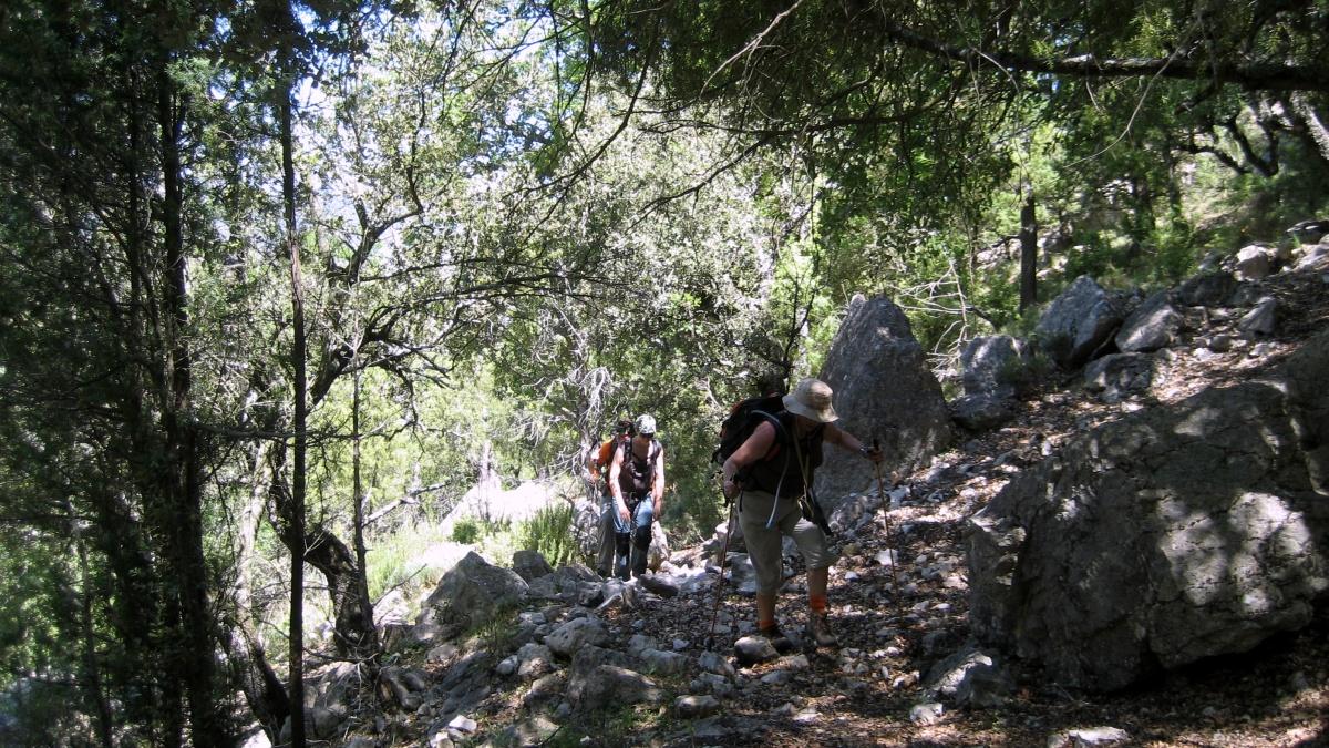 Vallibona - El Turmell