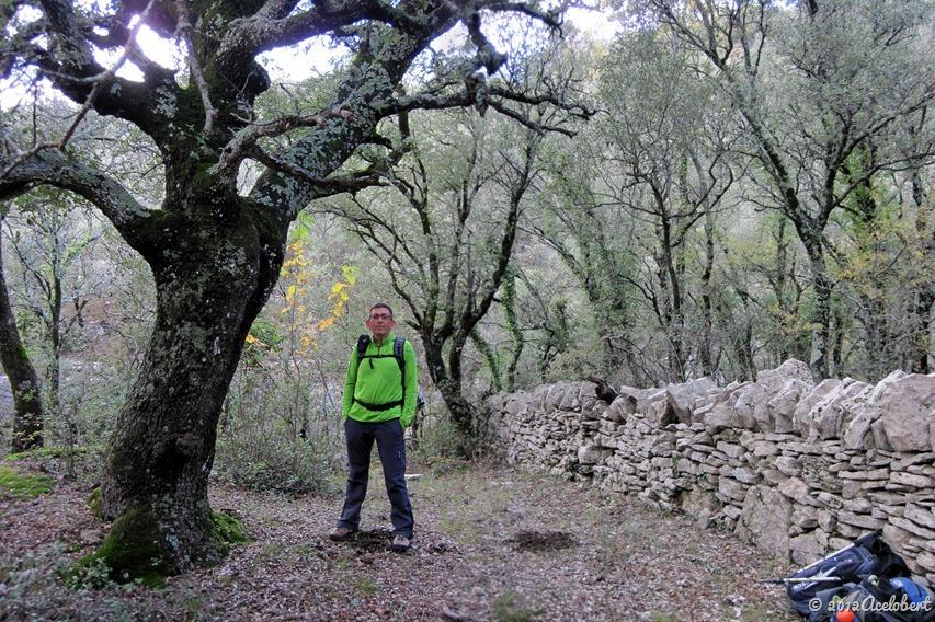Barranc dels Horts - arquitectura de la piedra seca