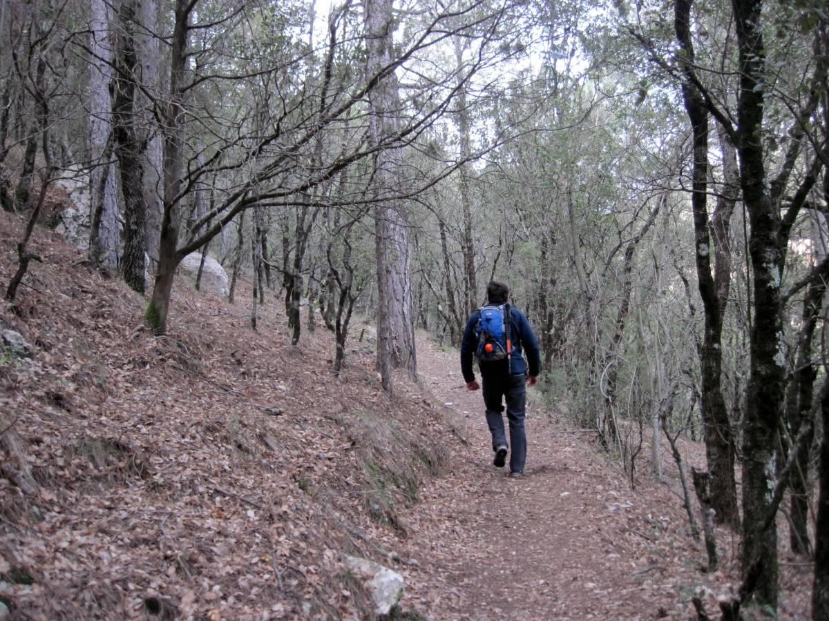 Vallibona - Molí del Rico - Font de la Donzella